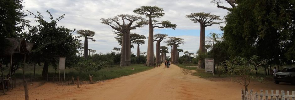 MADAGASCAR : Introduction au voyage