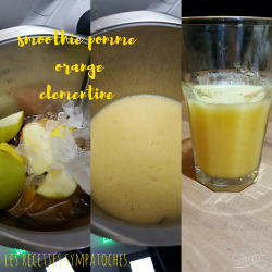 Smoothie pomme orange clémentine au thermomix