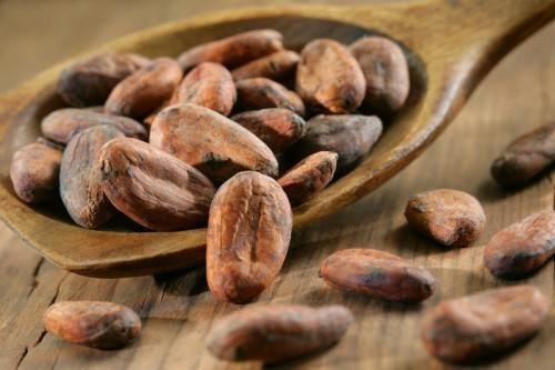 Le Cameroun a exporté 4 894,5 tonnes de cacao au mois d'août 2016