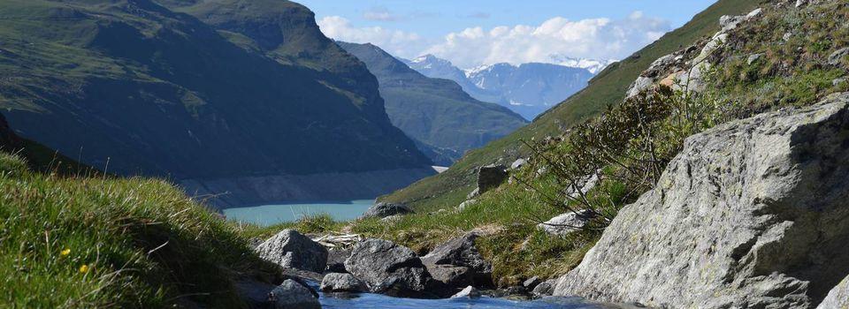 Voyage en Suisse =D [Vidéo]