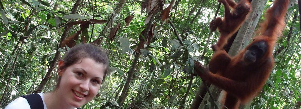 05.02 - Jungle Trek, Jungle Trek, in Bukit Lawang ...
