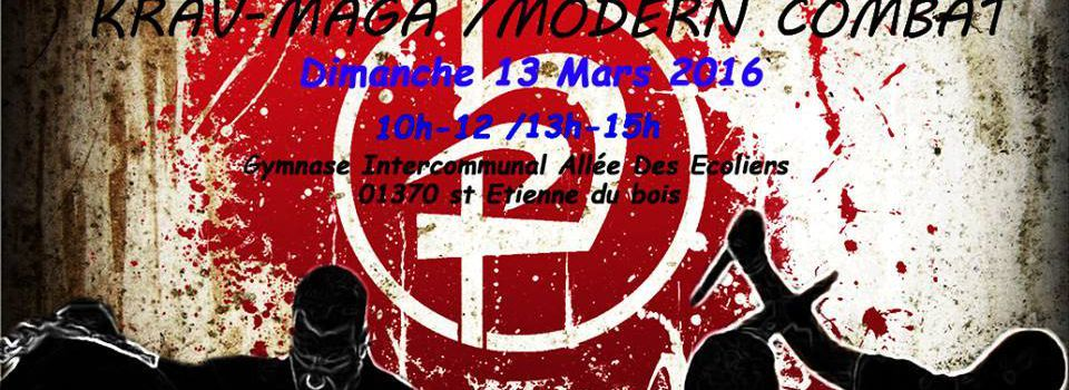 Krav Maga / Modern Combat stage de désarmement 13 Mars 2016 St Etienne du Bois