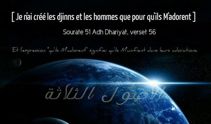 Pourquoi Allah nous a-t-Il créés?
