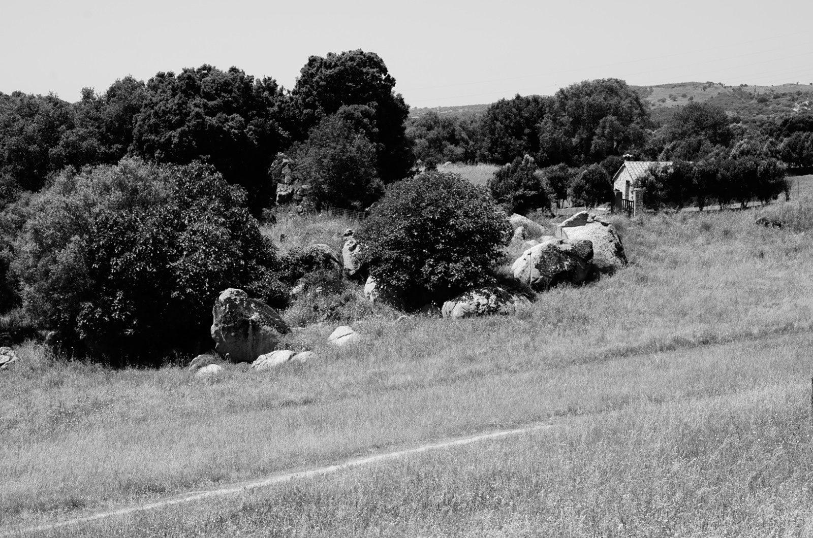 Filitosa : série en noir et blanc