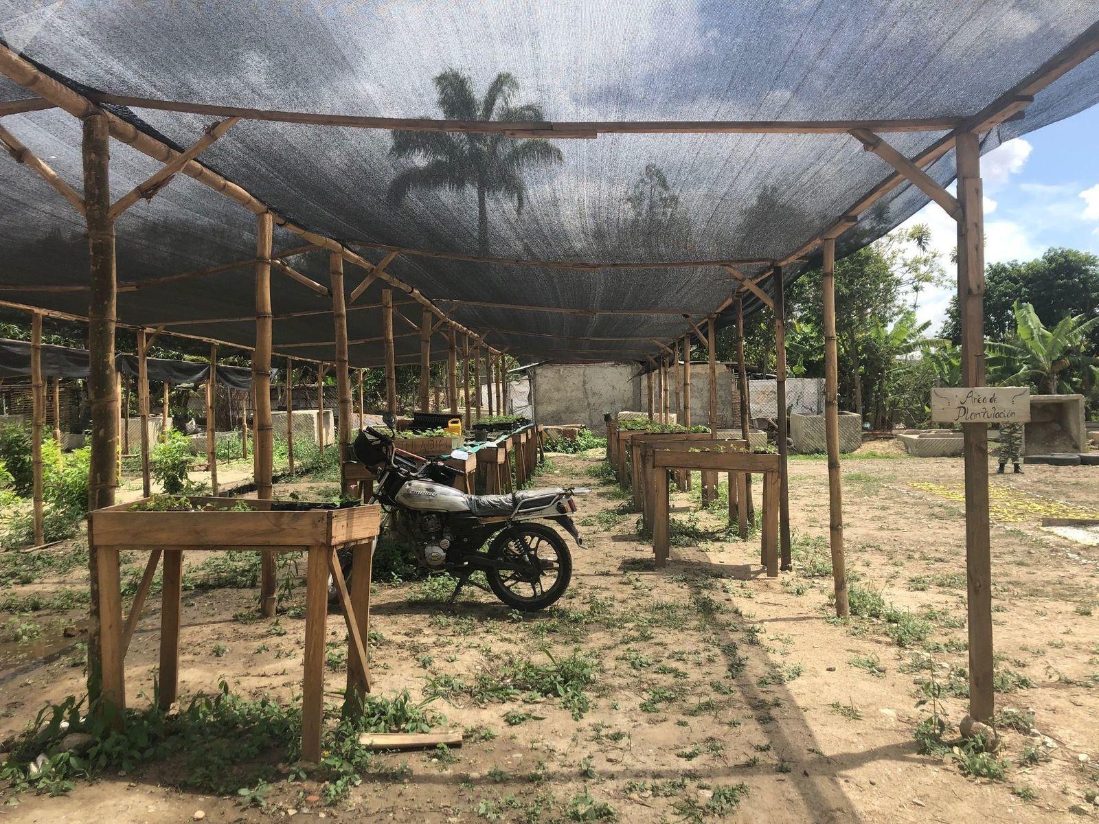 Venezuela: les civils apprennent les tactiques de résistance révolutionnaires
