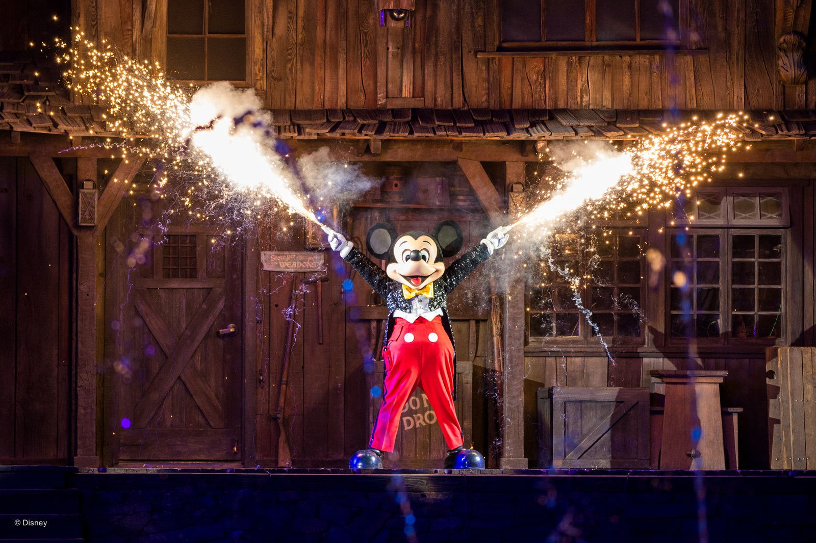 Photo officielle pack Photopass 2017