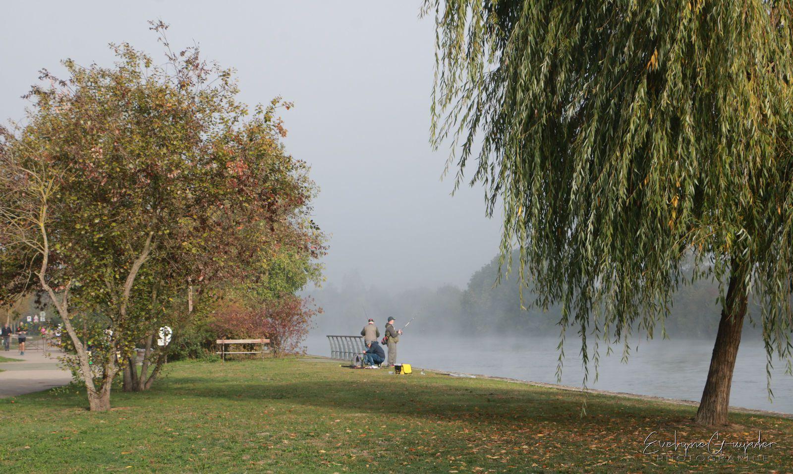 Dimanche d'octobre.. dans la brume..