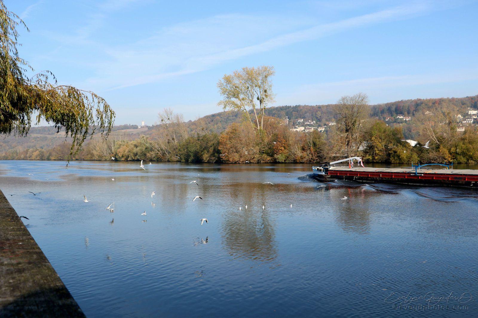 Au Bord de la Seine..