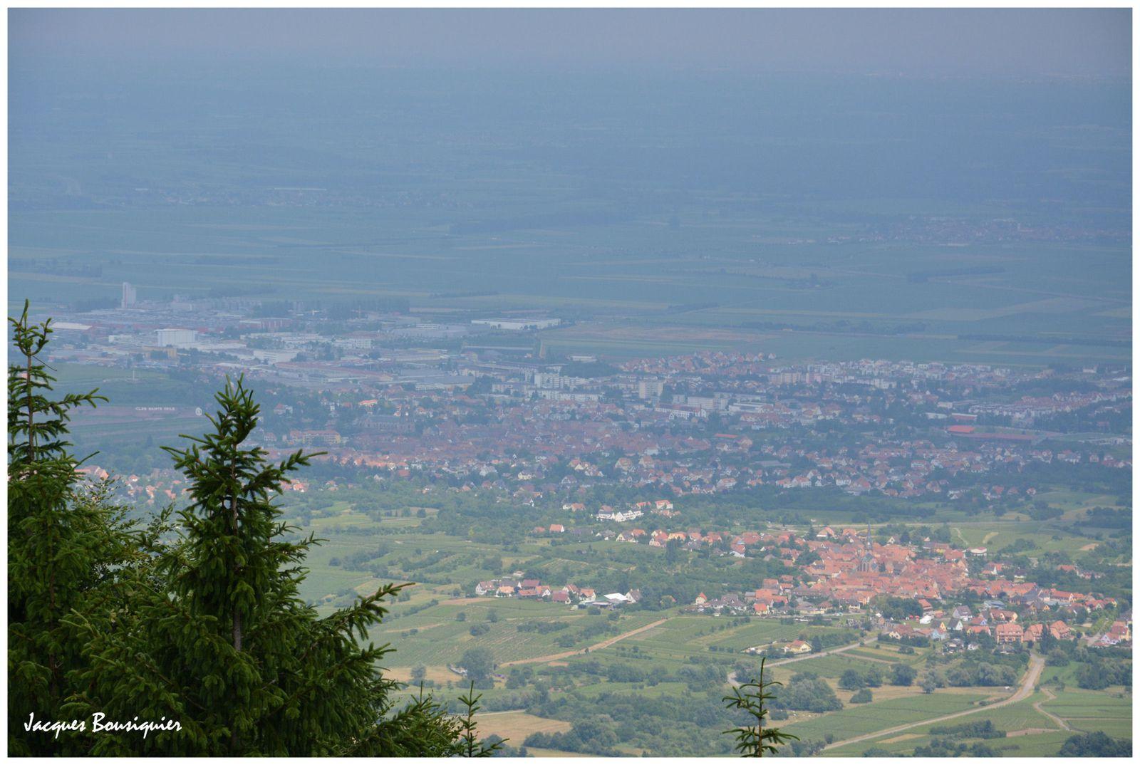 Points de vue sur la plaine d'Alsace au niveau d'Obernai