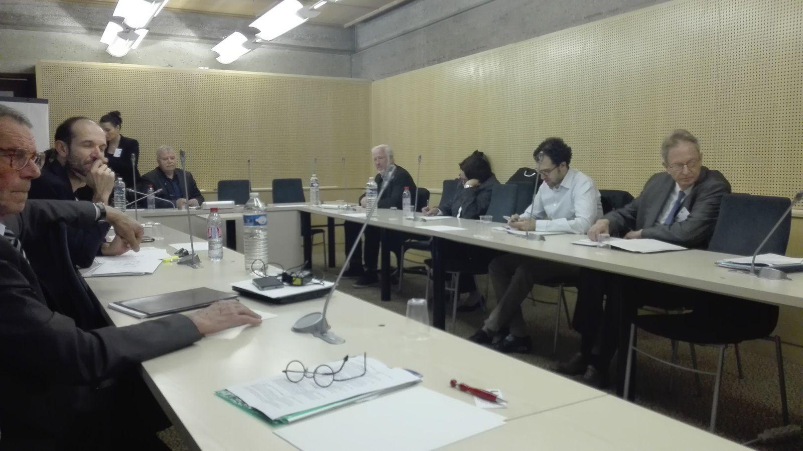 DISCUSSION SUR LE LIVRE BLANC DE LA COMMISSION EUROPEENNE AU CONSEIL ECONOMIQUE ET SOCIAL