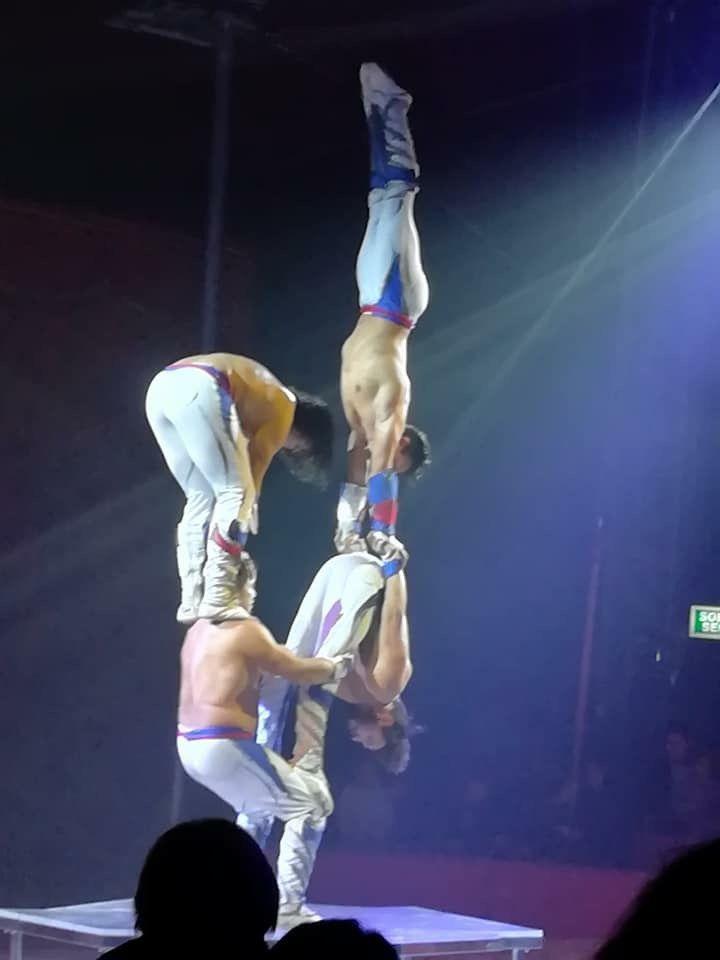 Album photo et video de la fête de noël 🎄 avec les stars du cirque aux haras a Annecy