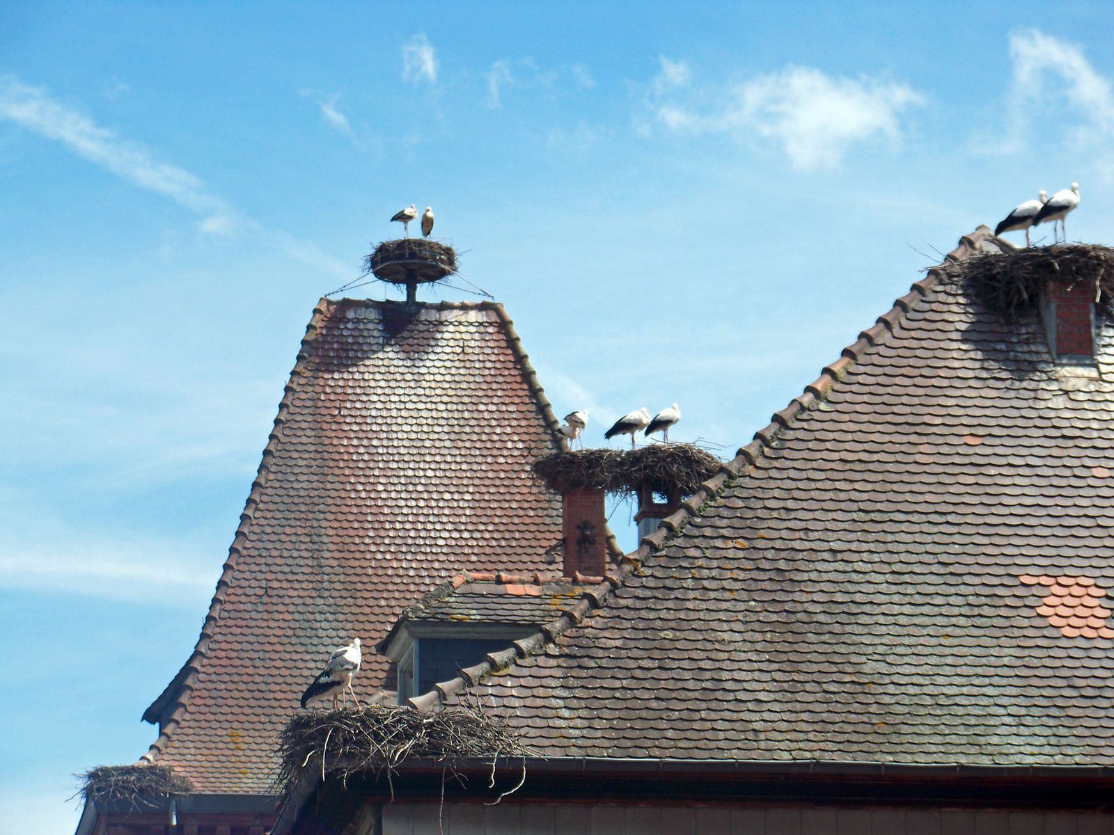 Eguisheim ,un des plus joli village de france