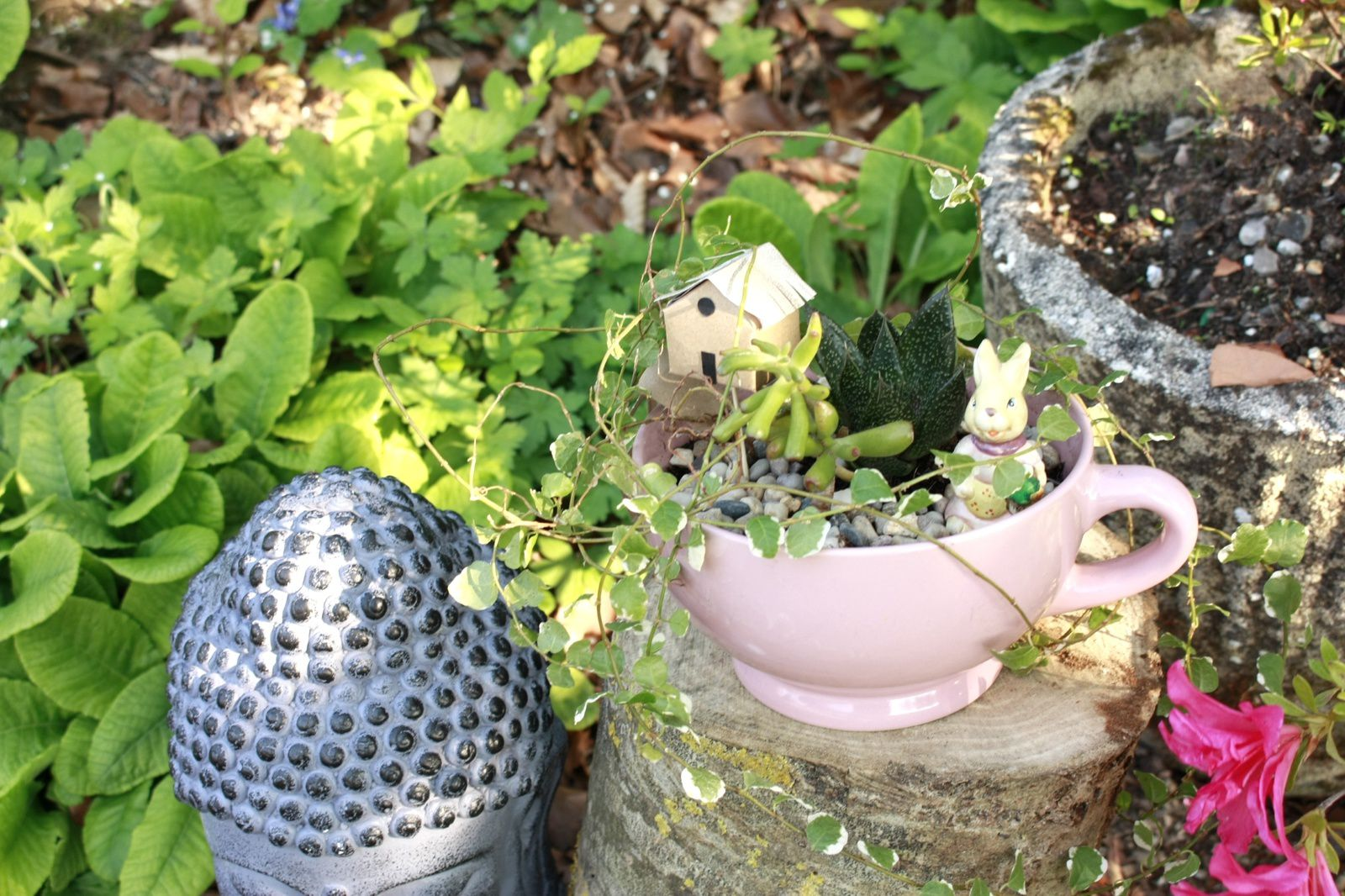 Composer un mini jardin le DIY  pour green addict !!