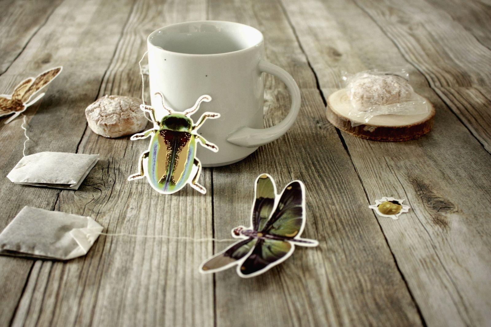 Les insectes pollinisent nos sachets de thé  :DIY