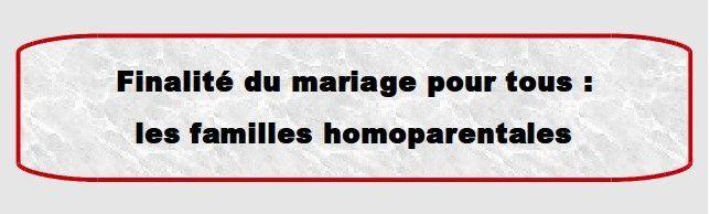 Mariage pour tous : égalité en trompe-l'œil!