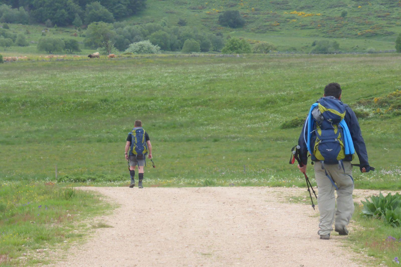 Nous passons à proximité du Buron du Sauvage à 1306m d'altitude et avançons vers le domaine du sauvage.