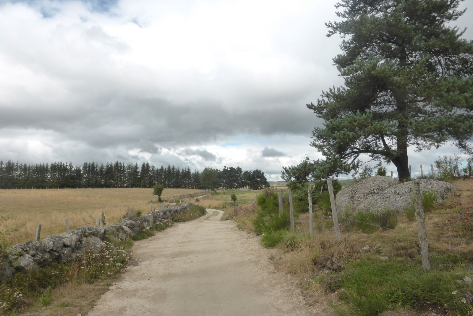 """Après le passage étroit, nous voilà au lieu-dit """"la Rimeize"""" qui est aussi un ruisseau, le secteur est à nouveau plus plat et plus large, mais pas pour très longtemps. Le paysage y est grandiose et nous en  profitons pour admirer et ressentir cet endroit calme et reposant."""
