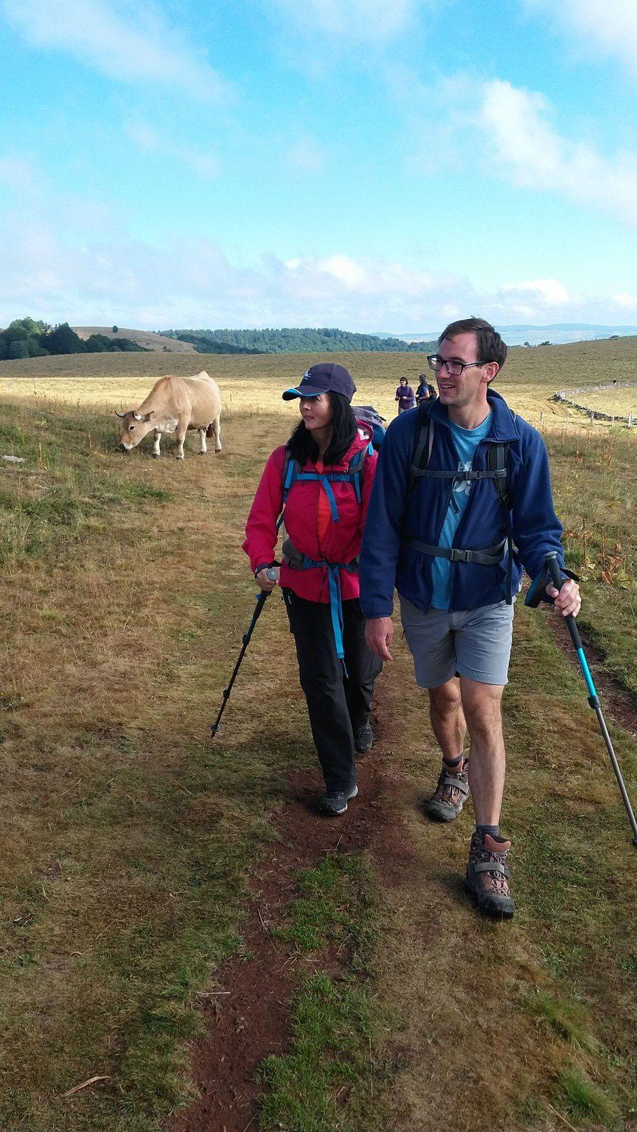 """Nous sommes à proximité du lieu-dit """"Ginestouse Bas"""", nos amis les vaches d'Aubrac, nous regarde d'un air curieux, Emeric donne des explications à Sylvie de l'endroit et du paysage environnant."""