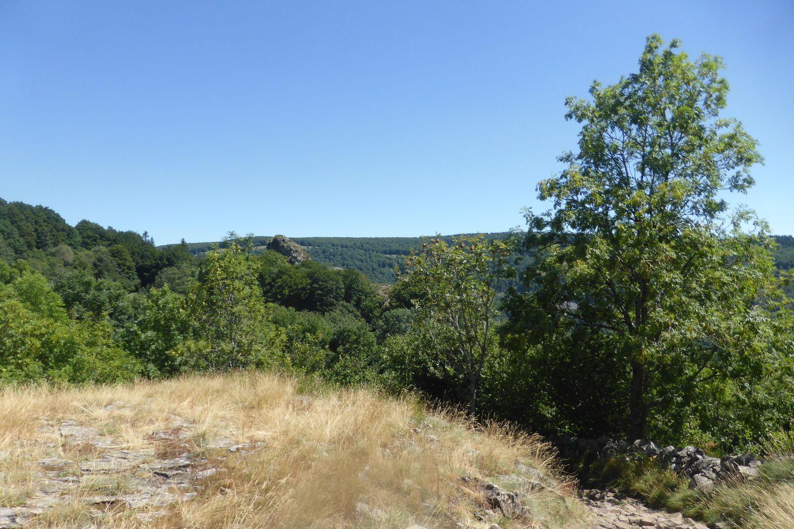 """Nous sommes entre le petit village du Belvezet et le lieu-dit """"Prat Fangous"""", c'est une zone géologique très intéressante, on peux voir, à peu de distance, vers le sud, un neck qui est un relief volcanique résiduel en forme de cône et plus ou moins pointue."""