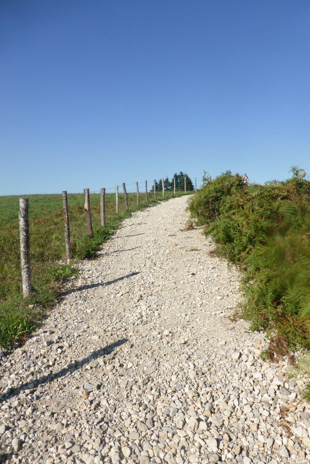 """Après avoir terminé la montée au lieu-dit """"les Fourques"""" nous atteignons le point le plus haut, on retrouve même de nouvelles toilettes sèches, après avoir fait une petite pause, nous continuons sur le sentier puis un peu plus tard, ce sera de la route jusqu'à Noailhac."""