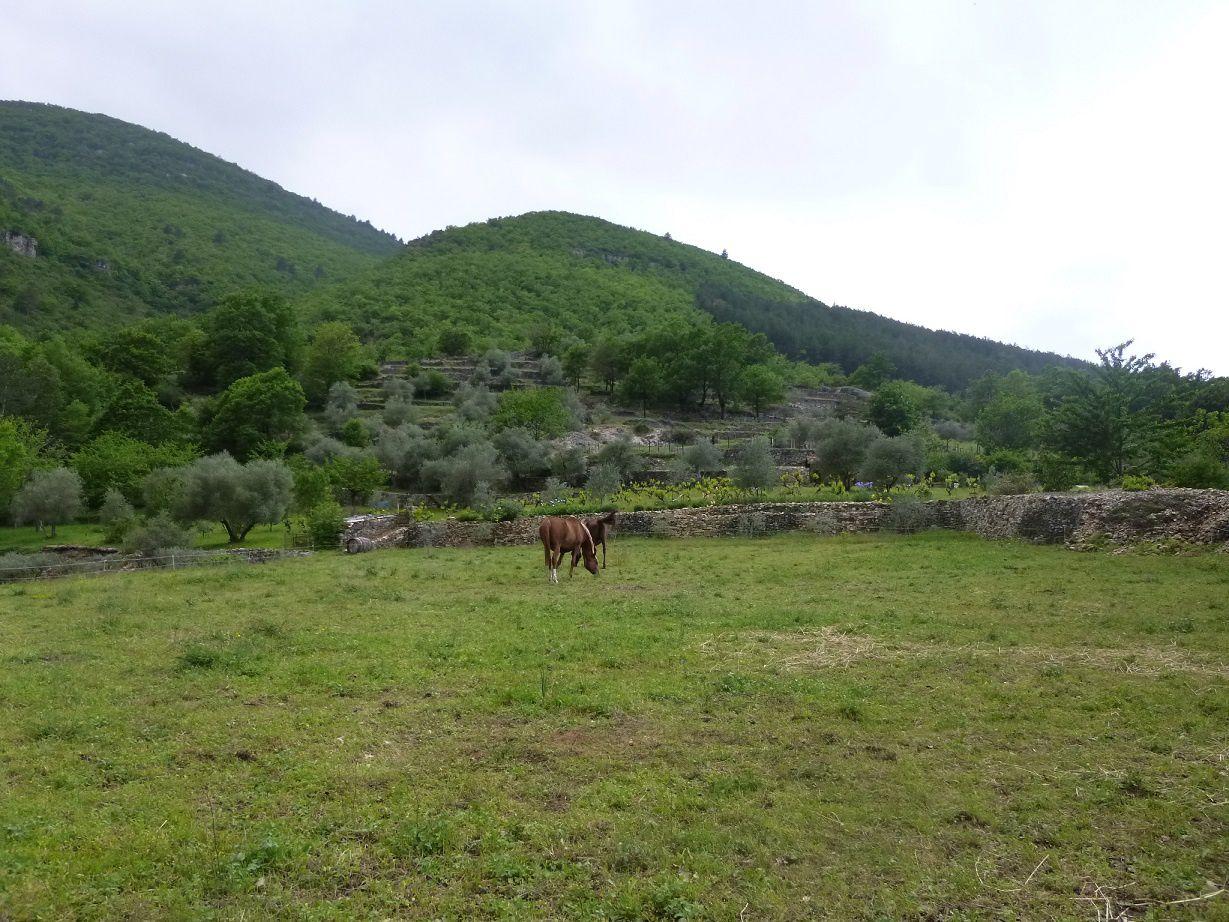 Le Chemin de Saint Guilhem: Mardi 15 mai – 3ème étape: