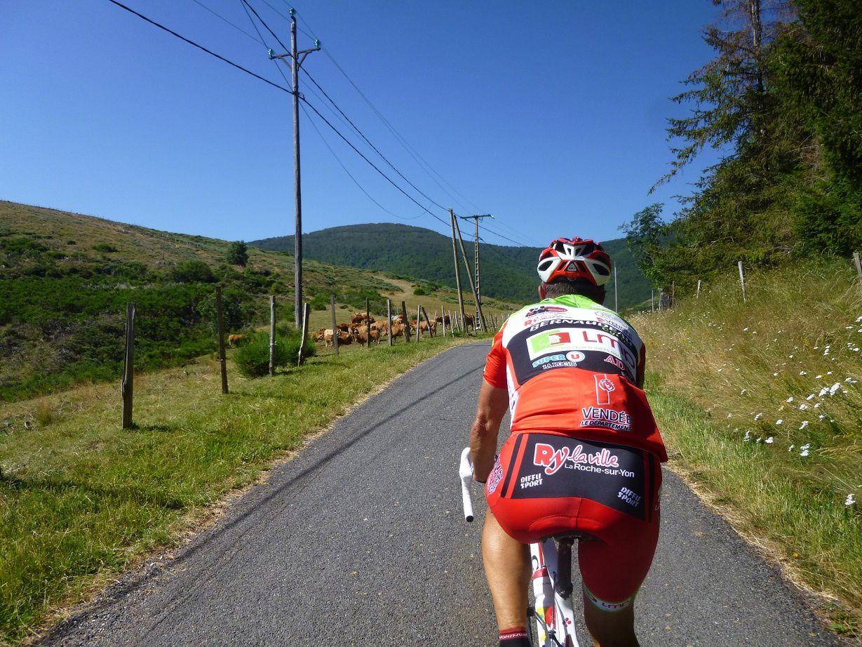 Le taureau est bien sur la route !