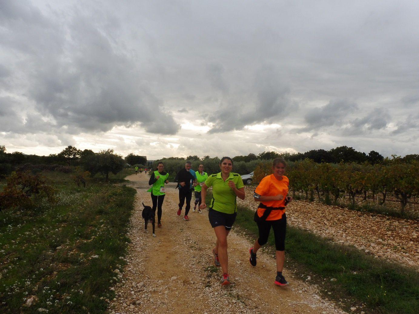 Courir avec Sarah 2018 à Saint Hilaire d'Ozilhan (30)