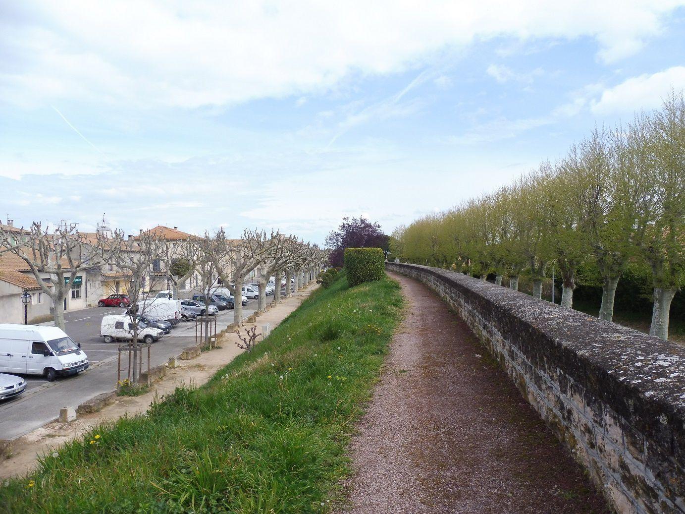 La ViaRhôna à Caderousse (84).