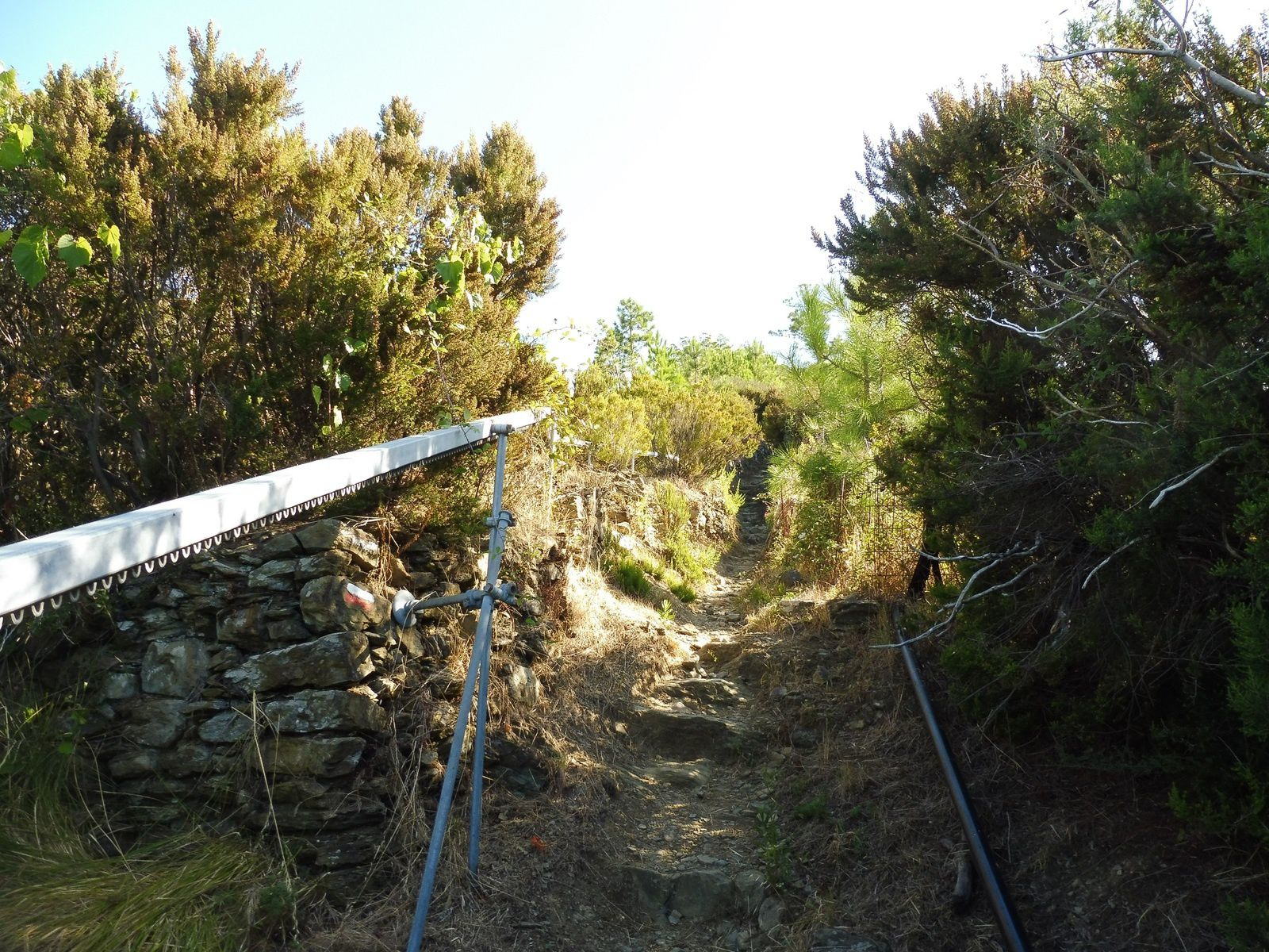 Les randonnées aux CINQUE TERRE (suite).