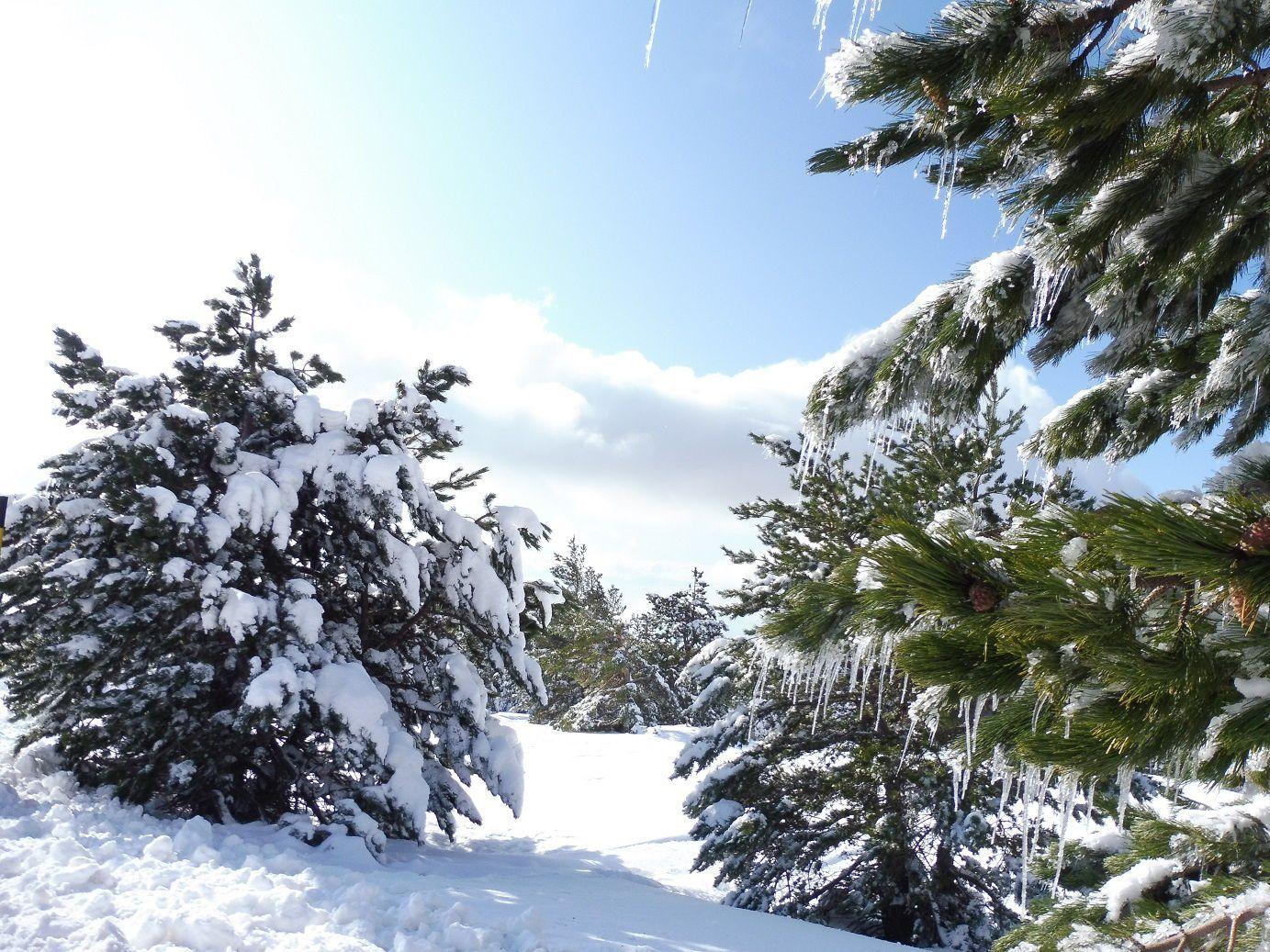 Chalet Reynard - le sommet du Ventoux, aller et retour dans la neige.