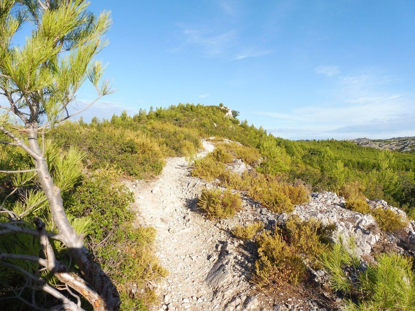 Randonnée à Mouriès (13) - Les Alpilles.
