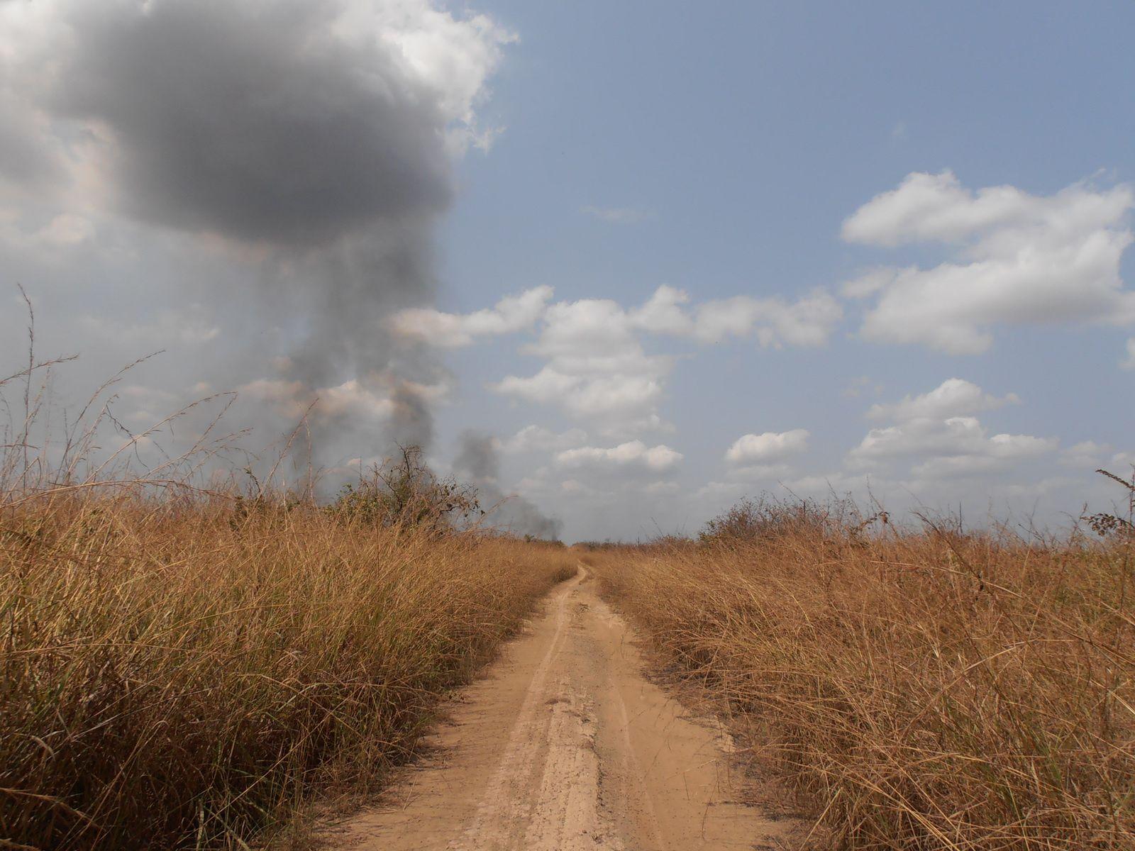 Quelque part en Afrique centrale.