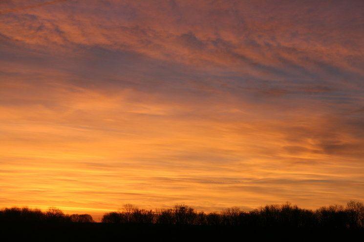 Photos prises de la fenêtre ce matin vers 7h30 ....