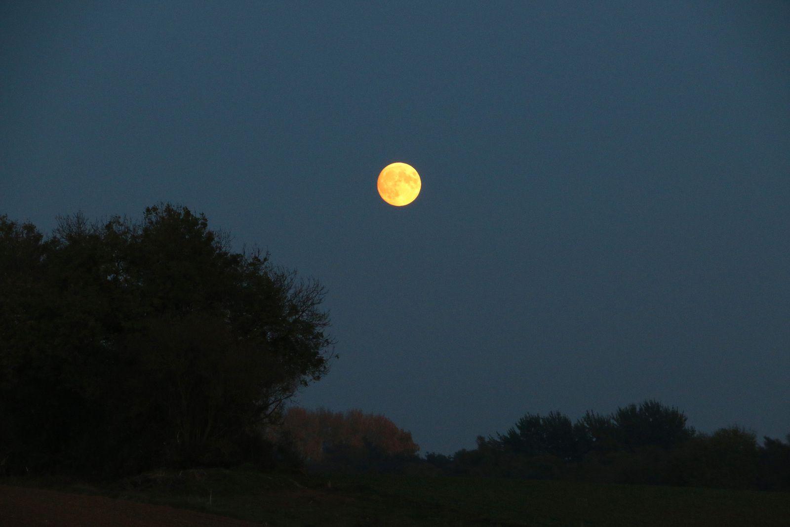 Lune rousse derrière la maison.