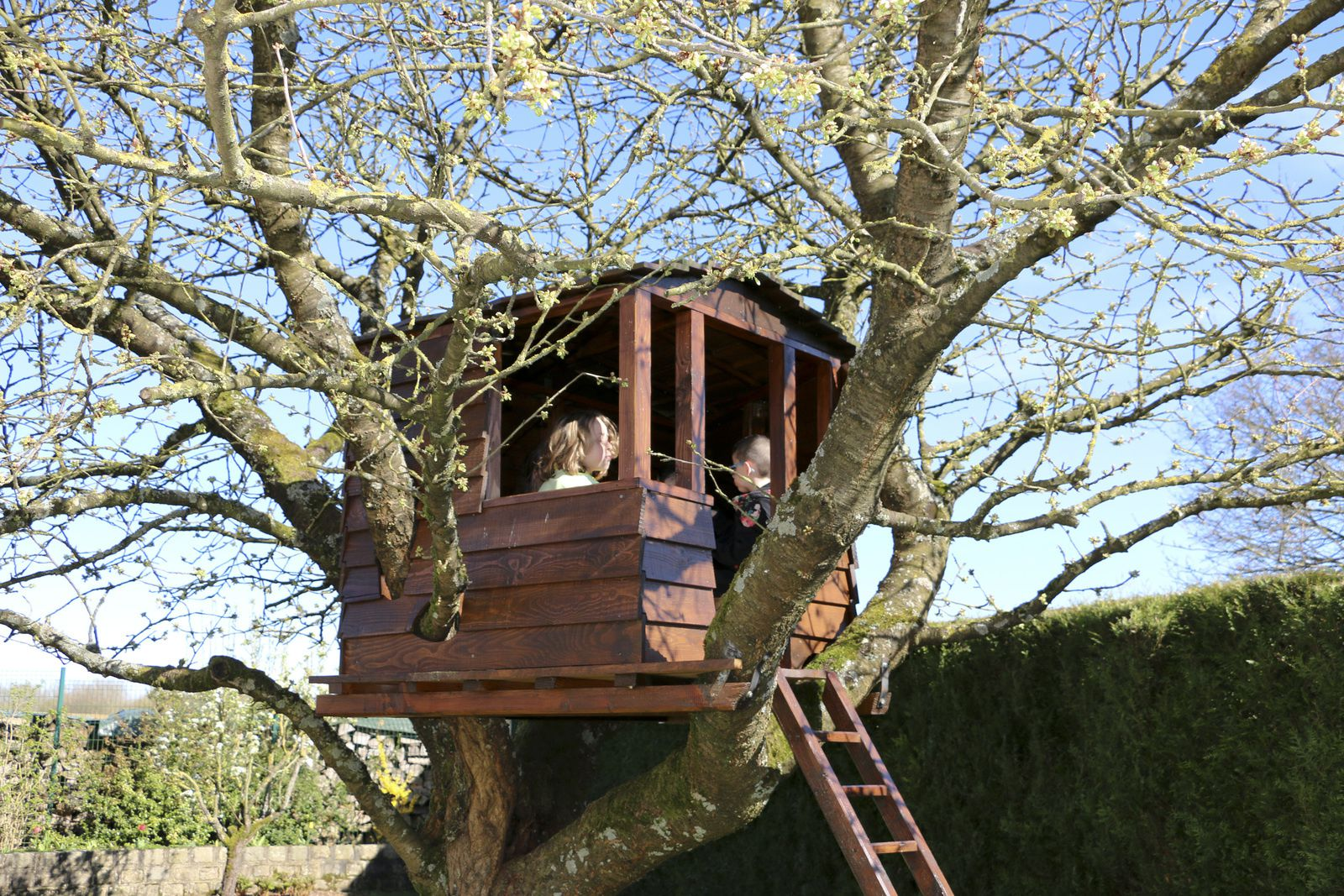 Vacances scolaires et rayon de soleil, la cabane perchée a repris du service !