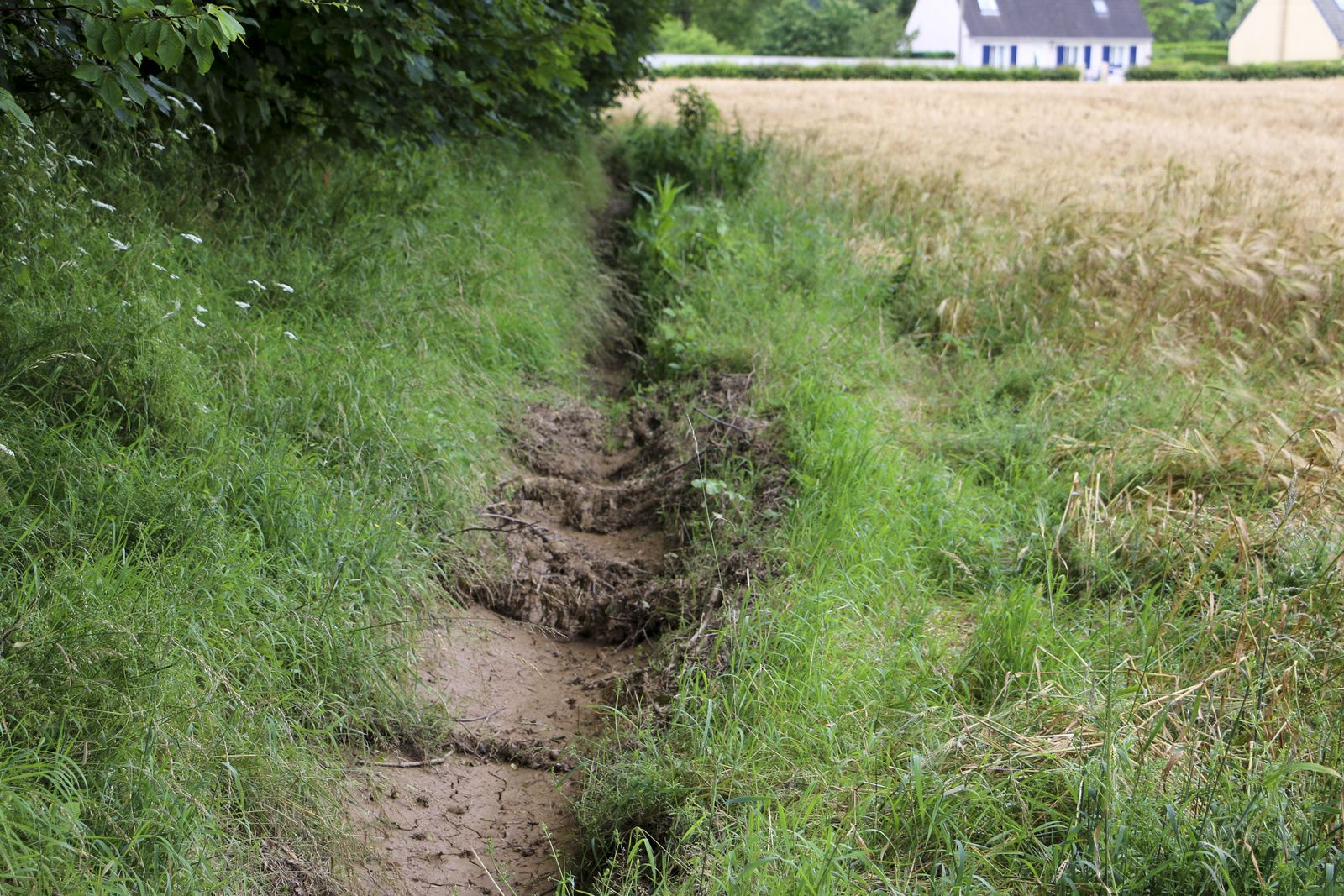 Etat des lieux des fossés après les intempéries.