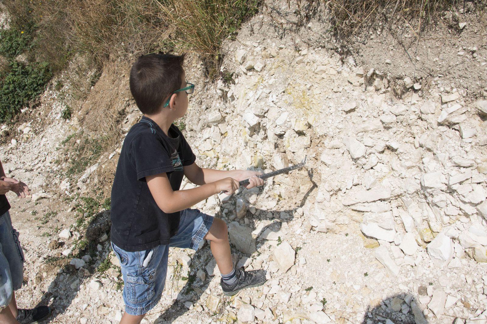 Une belle partie de chasse ... aux fossiles.