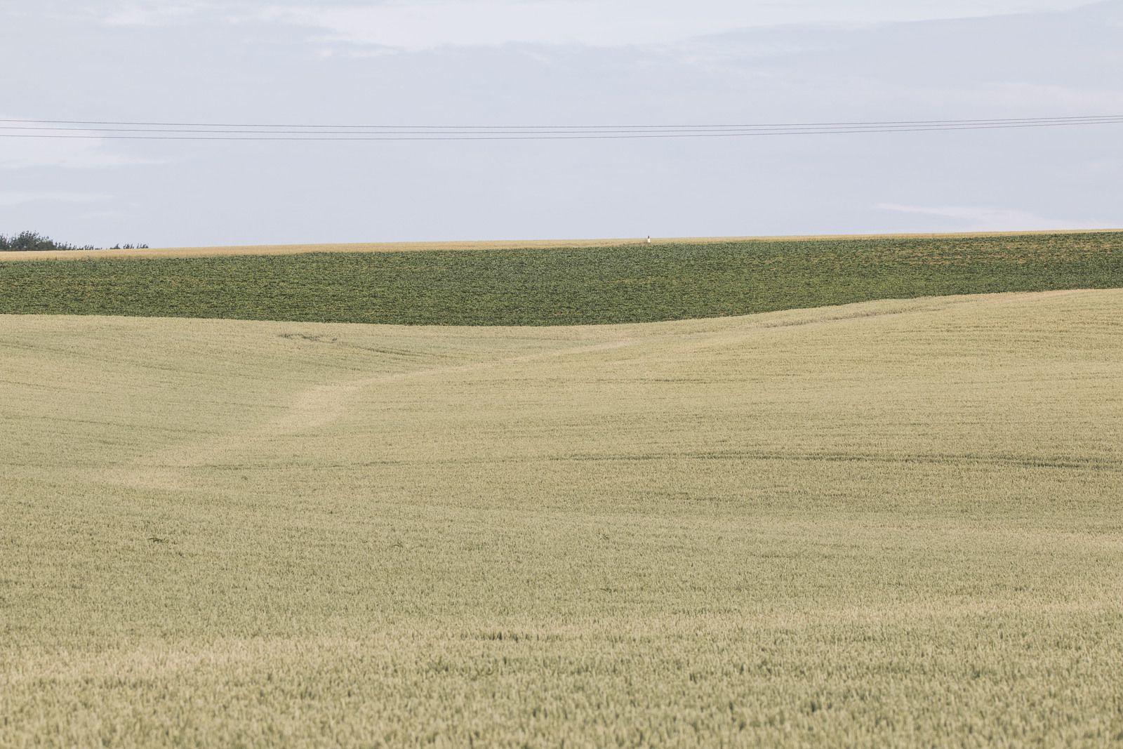 Stigmate encore visible d'une coulée de boue dans un champ proche d'Essigny. (Inondations du 11 septembre 2008)