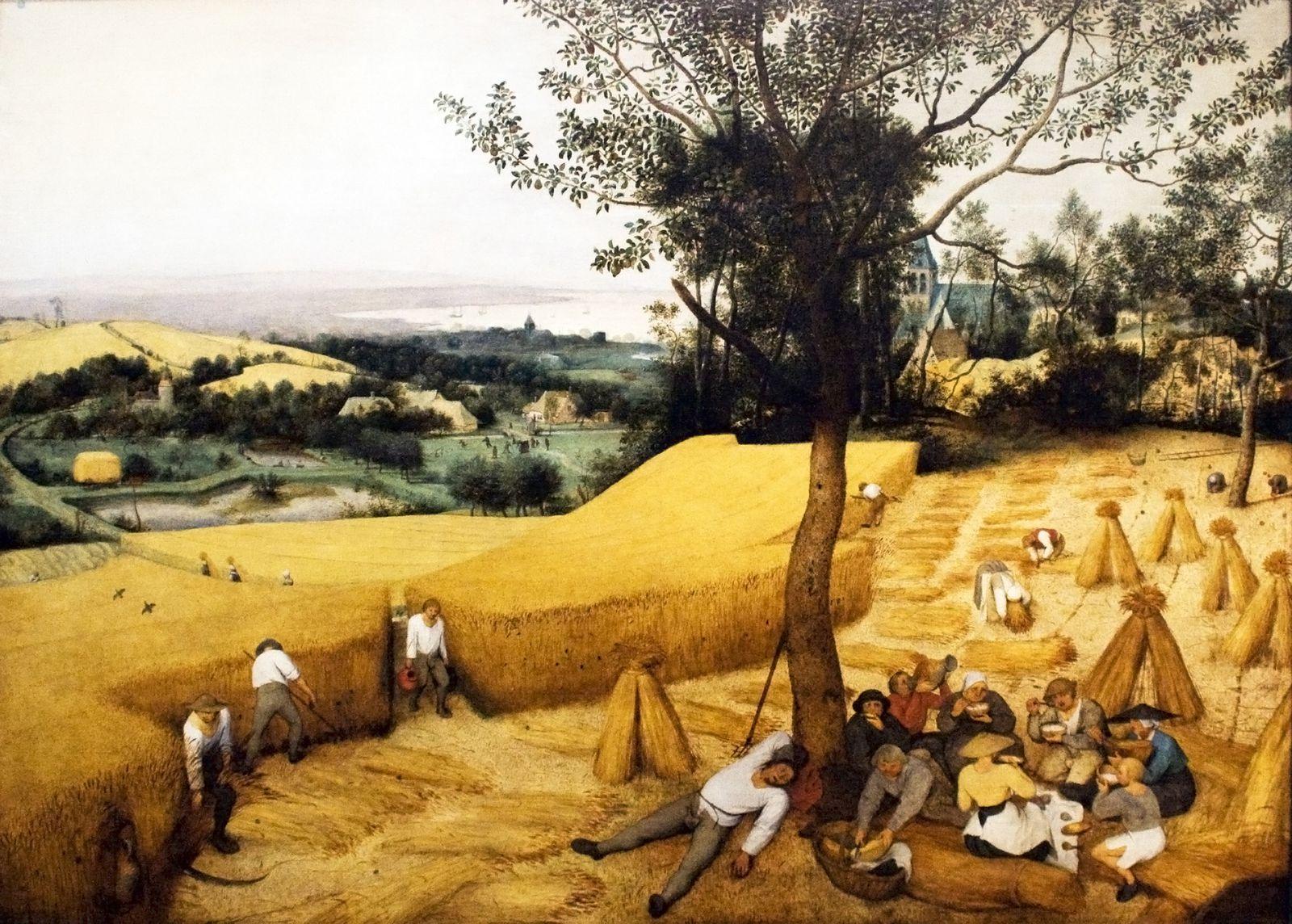 La moisson par Pieter Brueghel (1565)