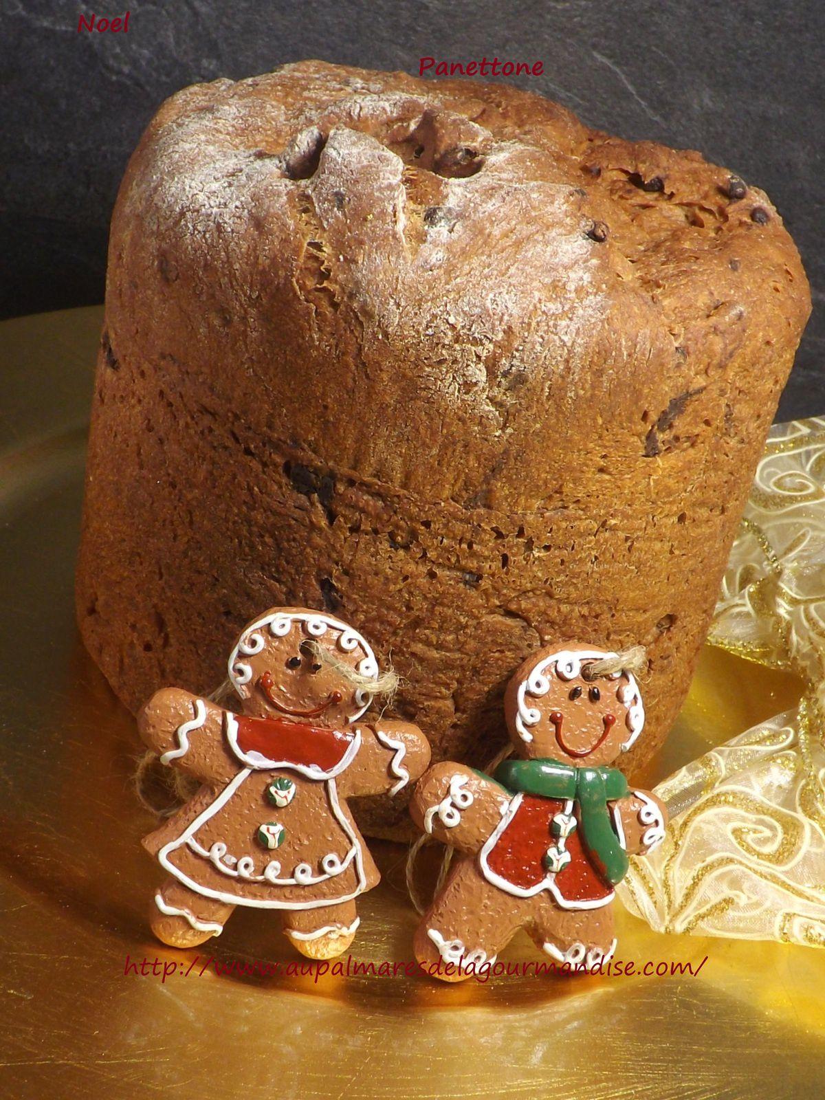 ** Delicieux Panettone de Noel sans beurre ni oeufs.  IG bas  pétrissage en MAP,cuisson au four**