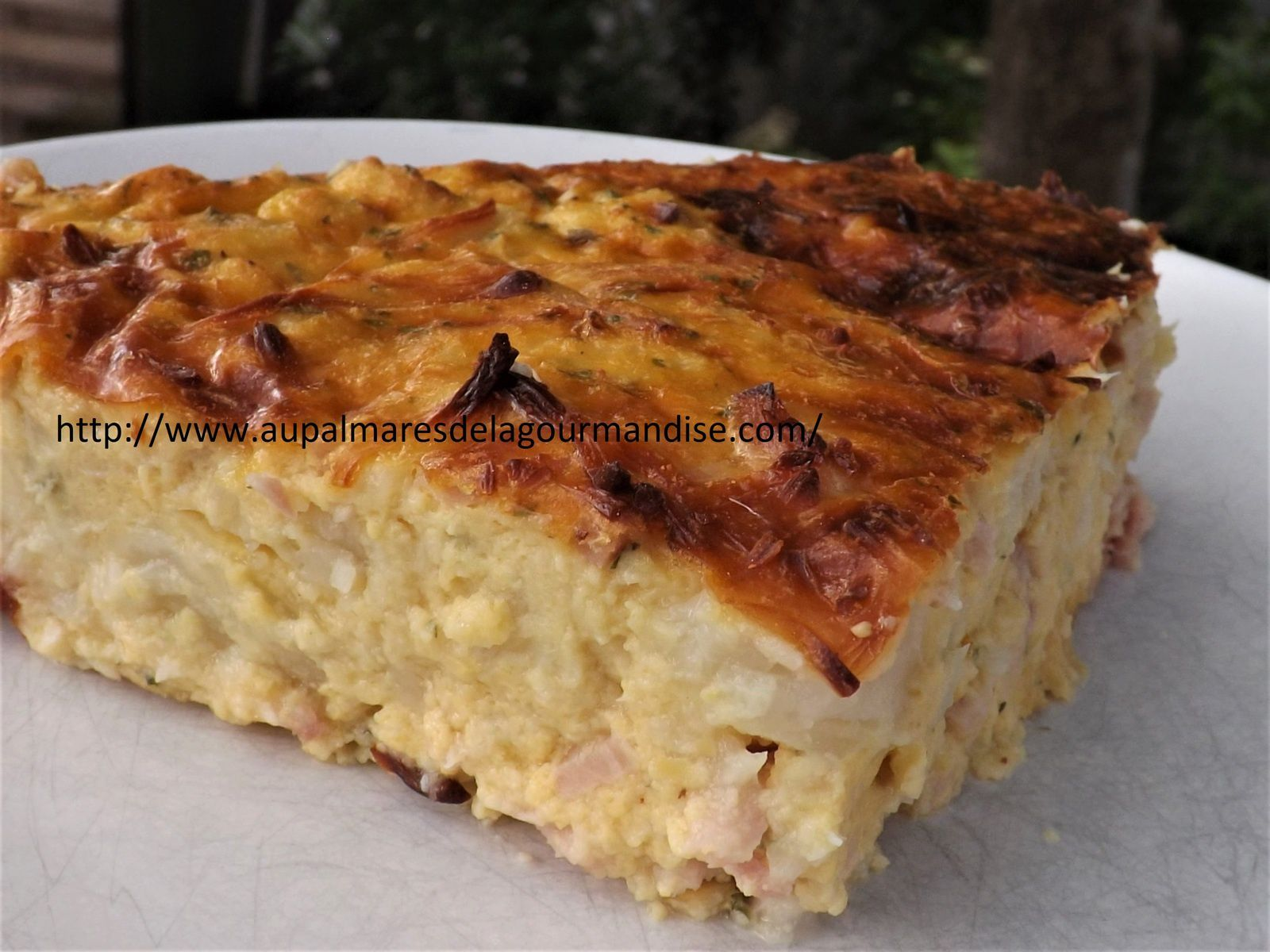 Quiche au choux fleur,poulet   ww (weight watchers)