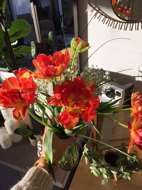 Les fleurs de ma soeur