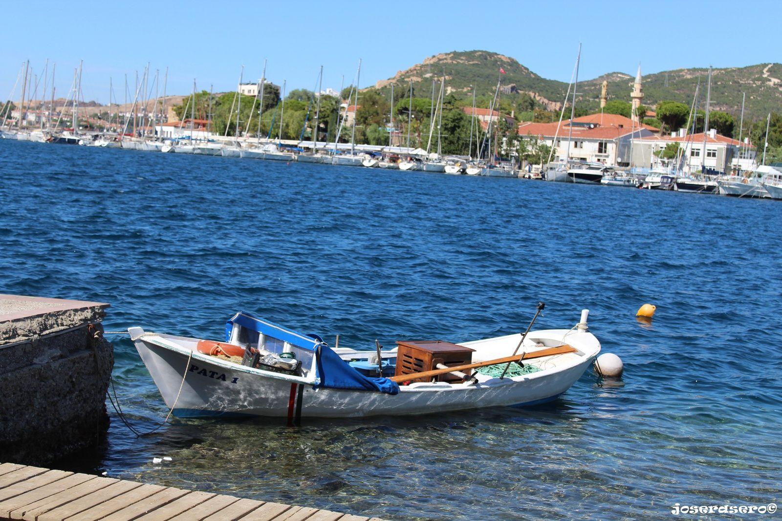 'Foça (Izmir)'