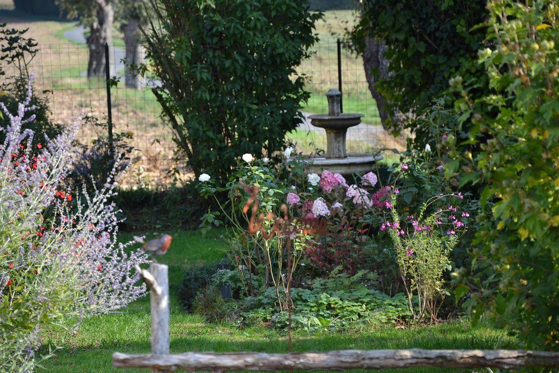 Journées des plantes à Chantilly : mon butin d'automne...