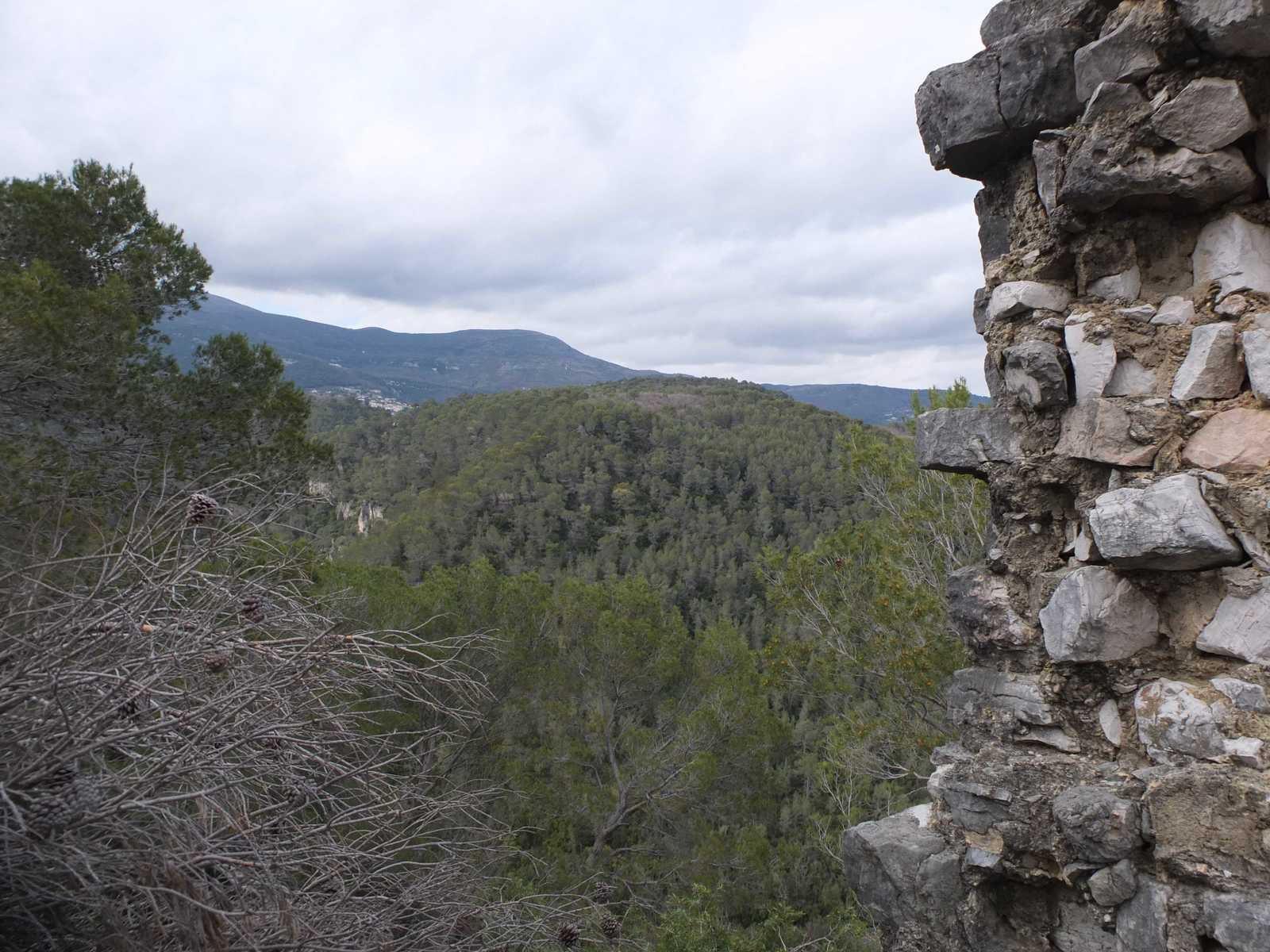 Vue depuis le donjon
