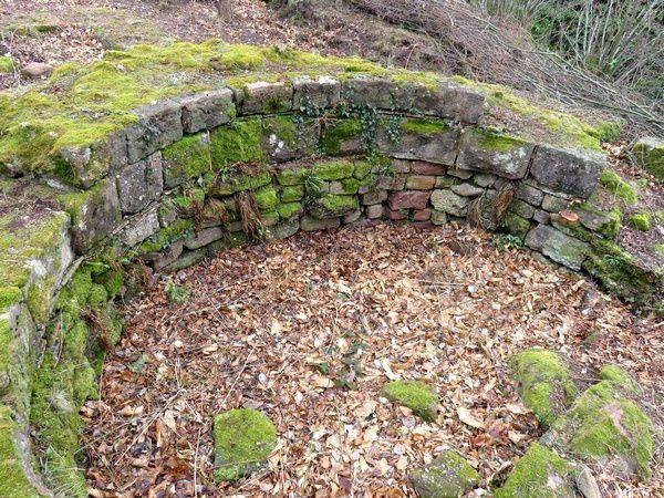 Les restes du Donjon de Conrad de Lutzelburc