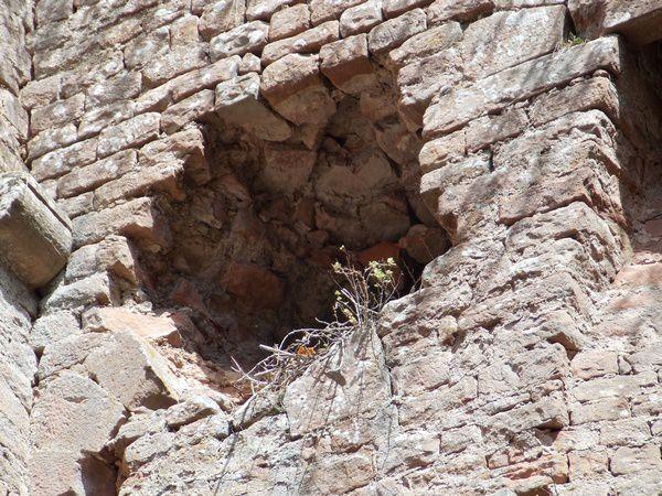 Brèche, face intérieure du Rathsamhausen