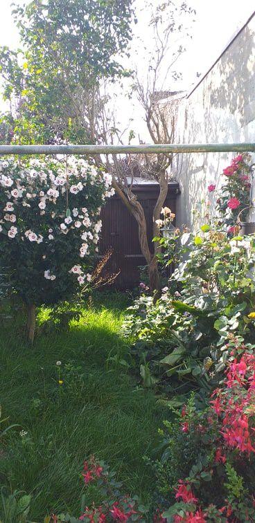 mon jardin, Victoria Lynn