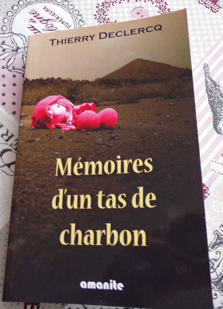 Mémoires d'un tas de charbon ; Thierry Declercq