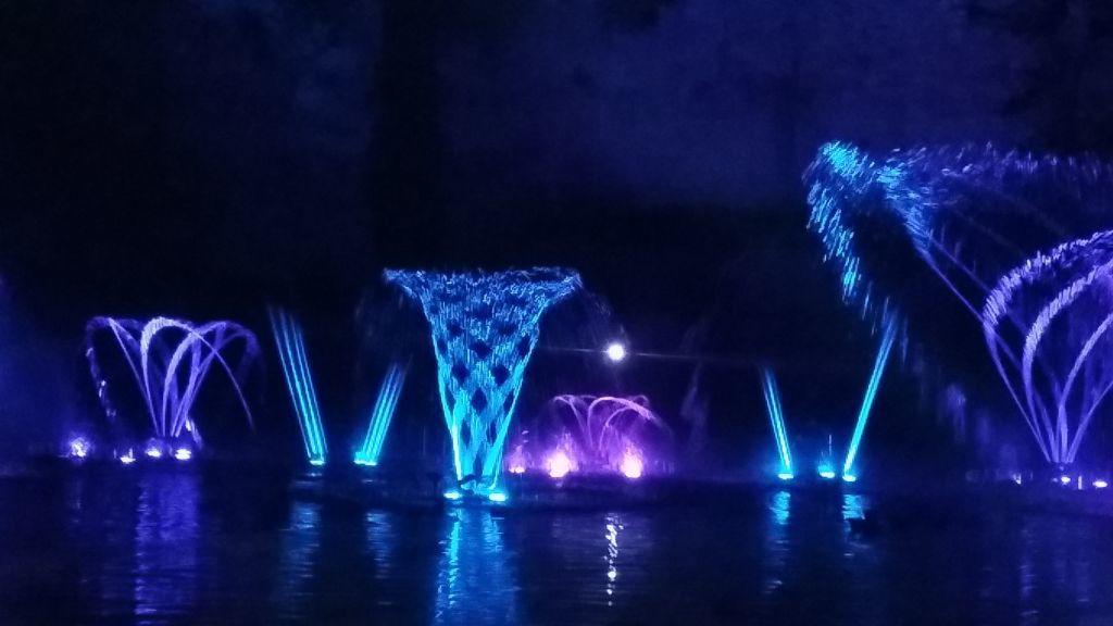 Fontaines dansantes: les arts du cirque